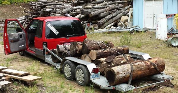A Load of Oak Logs